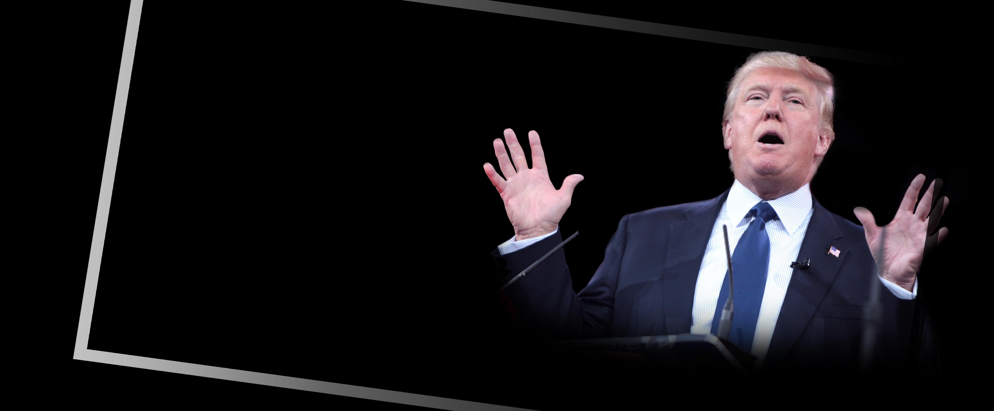 Steht Donald Trump über dem Gesetz? <br>  <span id='sec-title'>Enge Verbündete des Präsidenten fallen.</span>